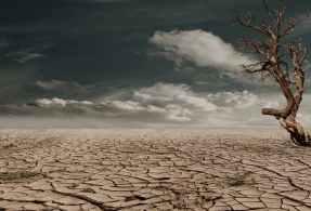 desert-drought-dehydrated-clay-soil-60013.jpeg