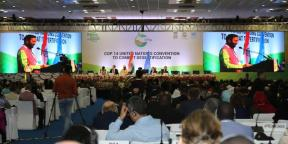 opening-session-2